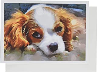 Best gifts for cavalier king charles spaniel lovers Reviews
