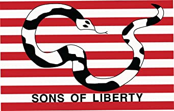 Sons of Liberty Flag - Metal Gear Solid 2 Dead Cell Solidus Snake
