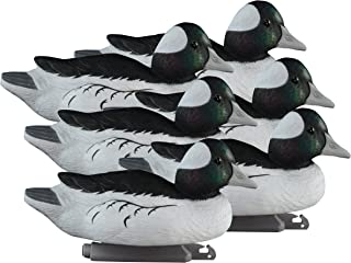 Higdon Outdoors Standard Bufflehead, Foam Filled, Drakes