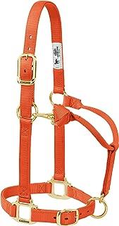 horse halter sizes
