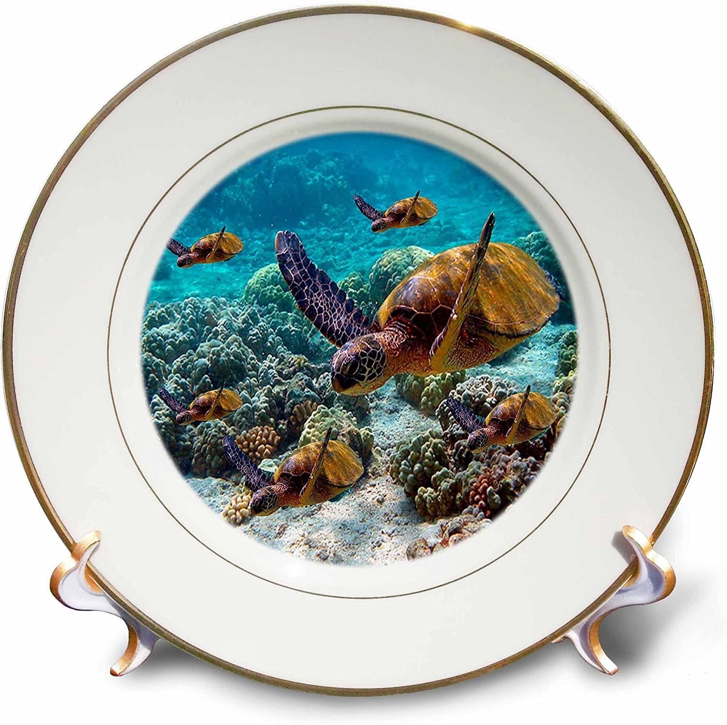 All items free shipping 3dRose LLC Sea Turtles Max 51% OFF Porcelain Plate 8-Inch