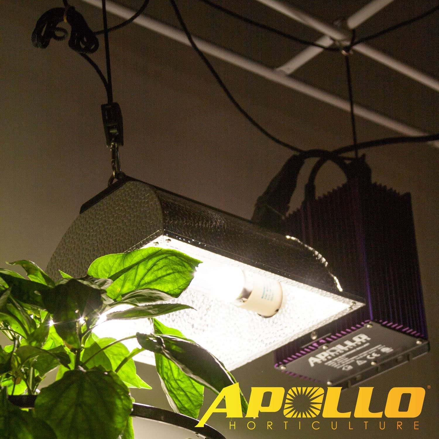 Apollo Horticulture Pair of 1//8 Adjustable Grow Light Rope Hanger w// Improved Metal Internal Gears