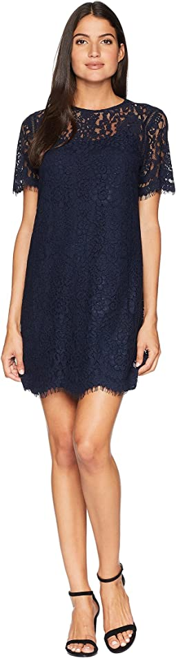 Hailey Lace Shift Dress
