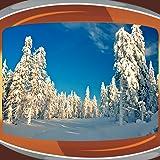 冬のライブ壁紙