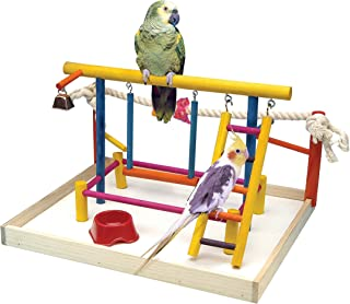 Penn Plax Wood Bird Playpen, Parrot Playstand Bird Playground Perch Gym Ladder with Toys Exercise Play