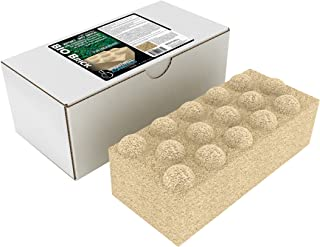 Best brightwell bio brick Reviews