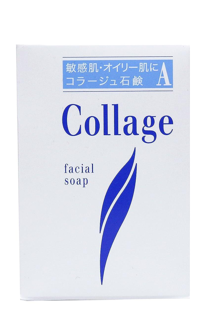 旋律的写真外観コラージュ A脂性肌用石鹸 100g