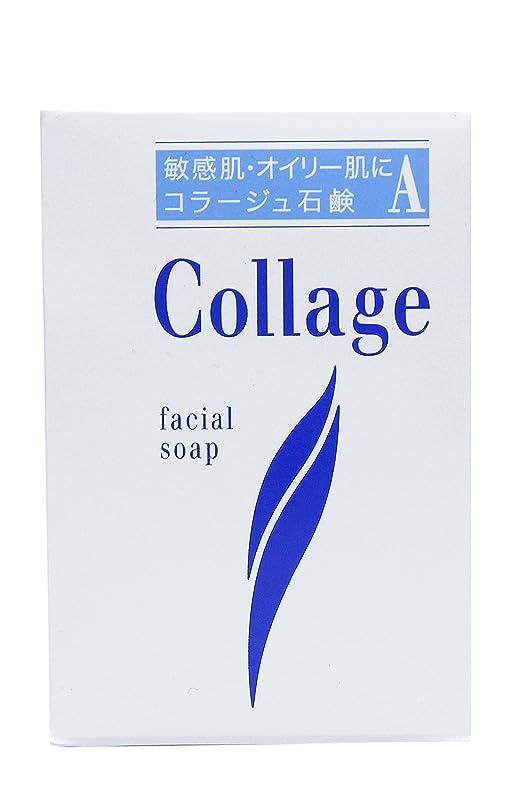 見つけた懺悔蒸留するコラージュ A脂性肌用石鹸 100g