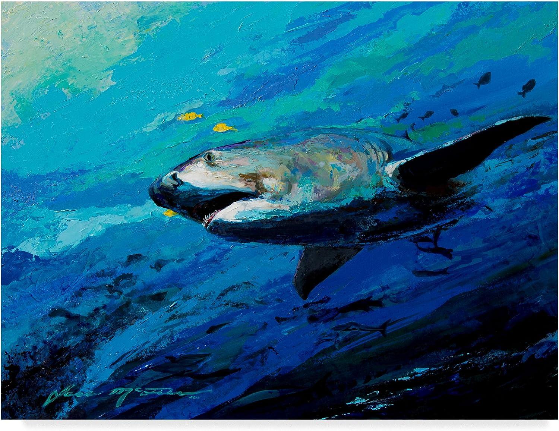 Trademark Fine Art The Mighty Bull Shark by Jace D. Mctier D, 14x19, Multicolor