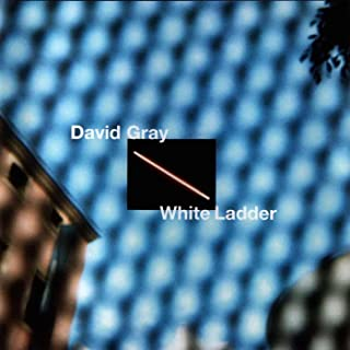 Best david gray my oh my Reviews