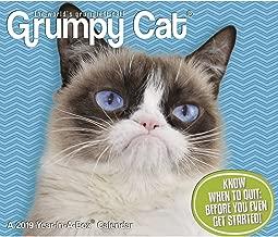 Best angry cat calendar Reviews