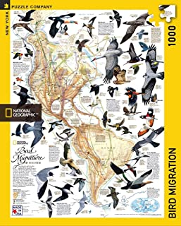 New York Puzzle Company - National Geographic Bird Migration - 1000 Piece Jigsaw Puzzle
