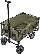 Amazon.es: carro transporte playa