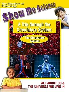 A Trip through the Circulatory System