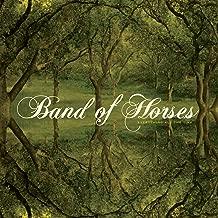 Best green hill band Reviews