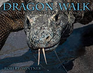 Dragon Walk: On Reef Recovery & Political Will