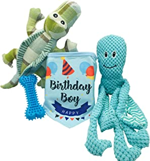 Best birthday toys for dogs Reviews
