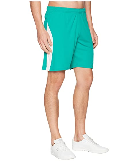 White Green Pepper Shorts PUMA Puma Liga FwZPxxX