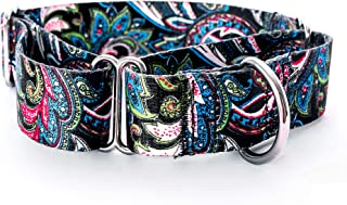 Alpha Lifestyle Pets Martingale Collar for Dogs S/M/L Teal Pattern (Leash Sold Separate)