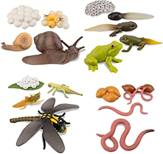 TOYMANY 17PCS Life Cycle of Frog Snail Earthworm Dragonfly, Egg Tadpole to Frog Safariology Amphibian Figurines Toy Kit, P...