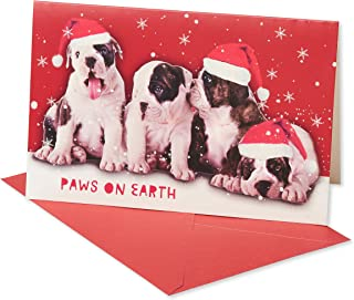 American Greetings 6027093 Deluxe Dog Christmas Boxed Cards and Red Envelopes, 14-Count