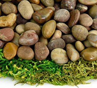 Southwest Boulder & Stone Polished Pebbles | 5 Pounds of Natural, Decorative Stones | Hand-Picked, Premium Pebbles for Aquariums, Terrariums, Fish Tanks and Gardens | Red, 3/8 Inch - 5/8 Inch