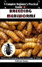 A Complete Beginner's Practical Guide To BREEDING MEALWORMS.: Everything you need to know & Do