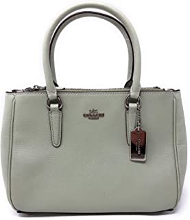 Mini Surrey Carryall in Crossgrain leather F44962 SV/Pale Green