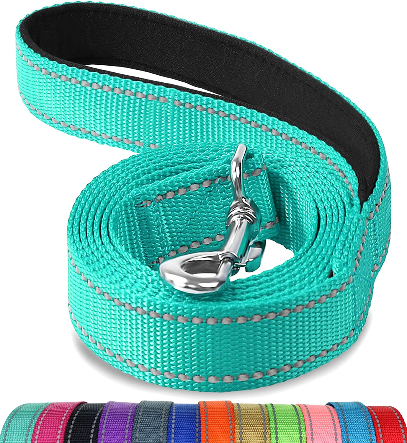 Joytale Reflective Nylon Dog Leash, Padded Handle Dogs Leashes for Walking,Training Lead for Medium & Small Dogs, 6FT,Teal : Pet Supplies