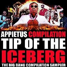 Tip of the Iceberg (The Big Bang Compilation Sampler)