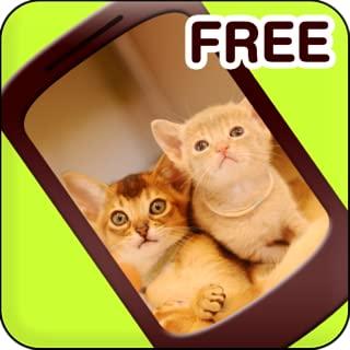 Cat live wallpaper Free vol.1