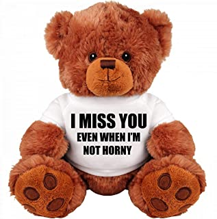 SinMan Funny Teddy Bear Couple Gift: Medium Teddy Bear Stuffed Animal : I Miss You