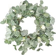 Emlyn 20'' Green Leaf Eucalyptus Wreath for Spring/Summer Festival Celebration Front Door/Wall/Fireplace Laurel/Tulip Hanger Home Relaxed Decor (Eucalyptus Tulip Wreath)