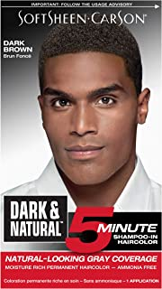 Hair Color for Men by SoftSheen Carson Dark and Natural, 5 Minutes, Natural Looking Gray Coverage for up to 6 weeks, Shampoo-in Permanent Hair Dye, Dark Brown, Ammonia Free, 1 Count