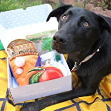 The Dapper Dog Box - Curated Fun Themed Dog Toys, Treats and Accessories Subscription: Large-Extra Large Dog (36 +LBS)