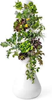 Lettuce Grow 36-Plant Hydroponic Growing System Kit, Outdoor Indoor Vertical Garden Herb Vegetable Planter Tower, Large Ho...