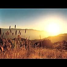 Divine Mercy Song (feat. Jackie Roberts-Sanchez)
