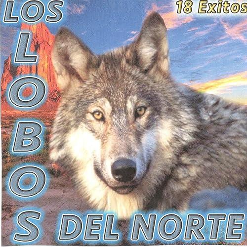 Que Bonito Es El Amor By Los Lobos Del Norte On Amazon Music