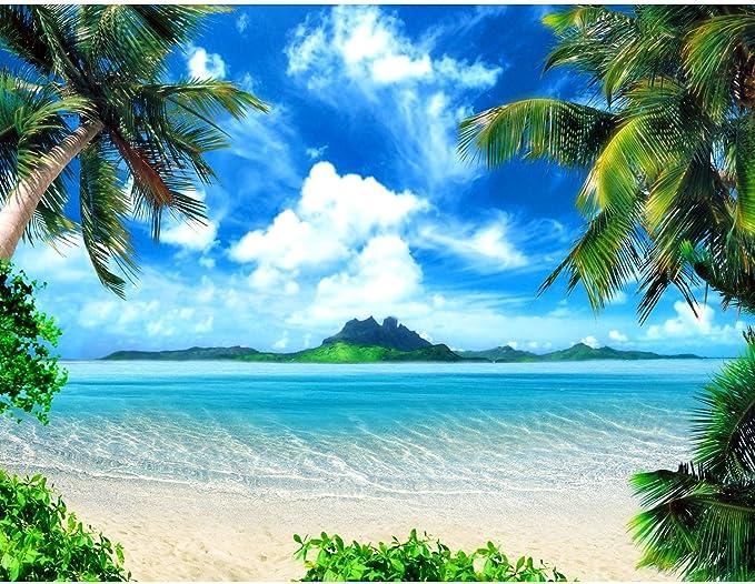 231 opinioni per Carta da parati fotografica Spiaggia e mare 352 x 250 cm Vello Sfondo Murale XXL
