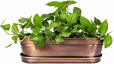 H Potter Large Planter with Antique Copper Finish and Brass Accents Indoor Centerpiece Outdoor Garden Pot Plant Box Holder with Tray for Succulents Flowers