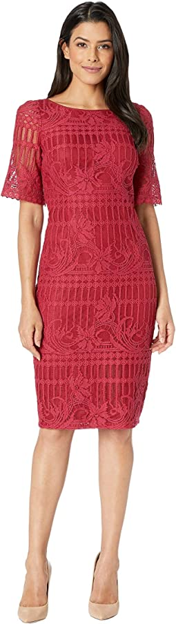 Carolina Scalloped Lace Sheath Dress w/ Rounded Neckline