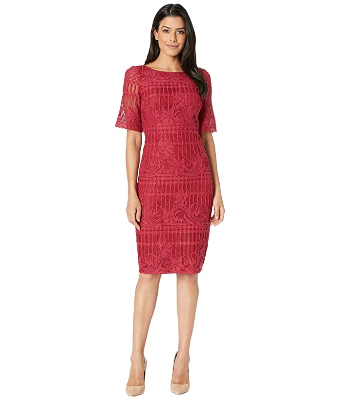 Adrianna Papell Carolina Scalloped Lace Sheath Dress w/ Rounded Neckline (Bright Red) Women