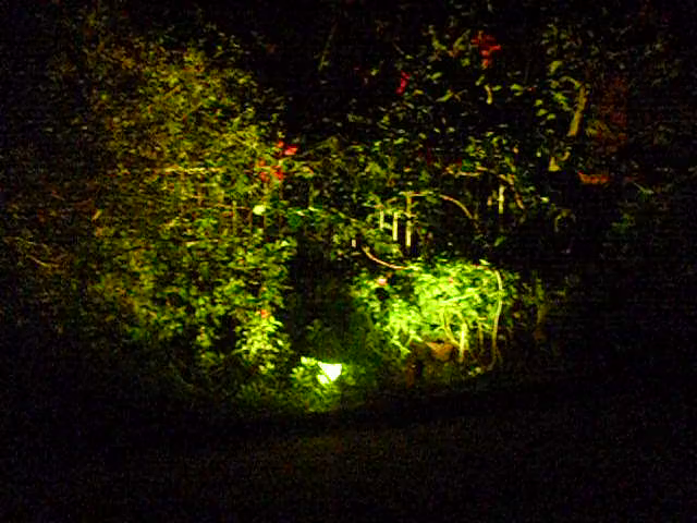 Amazon.it:recensioni clienti: lemonbest® 5w faretto led giardino