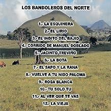 Mejor Cancion De Bandolero de 2021 - Mejor valorados y revisados