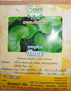 Centella Asiatica (Linn.) Urban. / Gotu Kola / Bai Bua Bok Tea Herbal Tea 100% Centella Asiatica (Linn.) Urban. Extract Healthy Drink Relieve Fever Help Blood Circulation 1 g x 15 Teabags Made in Thailand