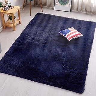 PAGISOFE Super Soft Fluffy Velvet Fabric Indoor Room Area Rugs Carpets for Living Room..