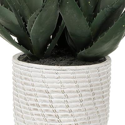 "Vickerman 14"" Green Succulent in Concrete Gray Pot. Artificial-Plants"