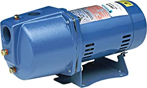 Goulds JRS7 Shallow Water Well Jet Pump, 3/4 HP, Single Phase, 115/230 V