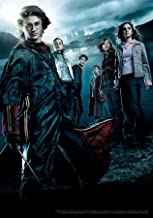 Trends International 8.25x11.75 MDF - Harry Potter - Goblet of Fire Wall Poster, 8.25