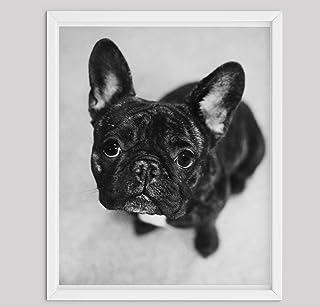 Regali di Bulldog Francese Per gli Amanti Dei Cani, Stampe su Tela di Poster Varie Dimensioni, Regali di Amante del Bulldo...